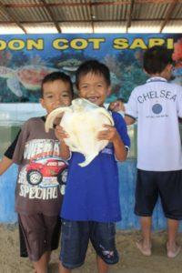 pulau penyu tiket Turtle Island Glass Bottom Boat Tanjung Benoa Bali