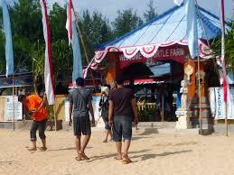 Pulau Penyu Bali paket murah