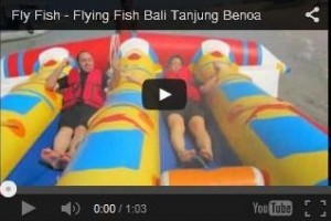 Flying Fish Bali