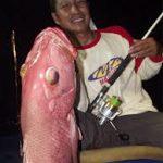 Red Snaper Bali
