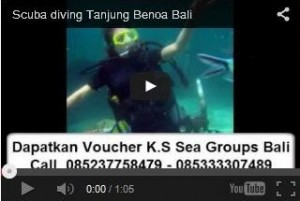 Video Scuba diving Bali