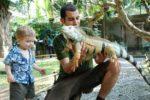 Iguana Bird park