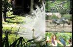 Taman Burung