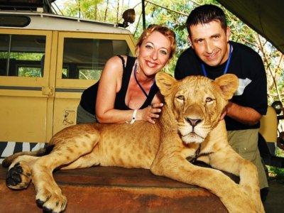 Bali safari park Selfie dengan Singa