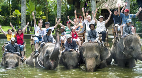 Naik Gajah Di Bali Safari Park