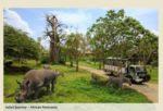 Paket Bali Safari Murah