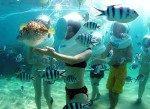 Bali Sea Walker Murah