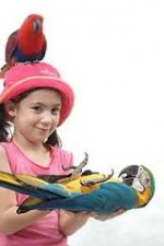 Booking Bali Bird Park