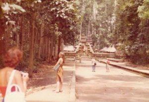 mongkey forest ubud 1982