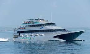 kapal quicksilver bali