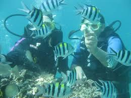 scuba diving seru tanjung benoa