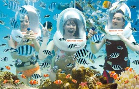 Paket Seawalker Bali murah