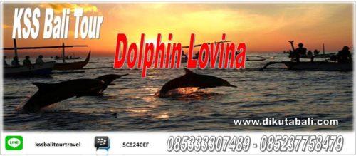 Ticket Dolphin Lovina Bali