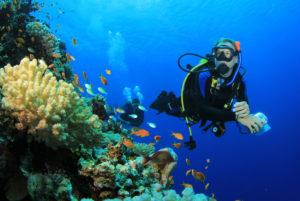 scuba diving tanjung benoa 7