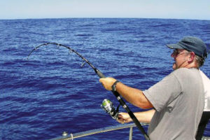 Bottom Fishing with jigging style fishing