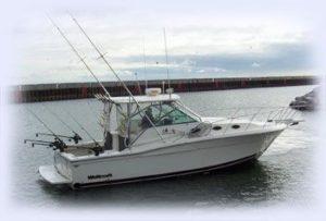 Small boat rental