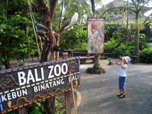 zoo park Bali
