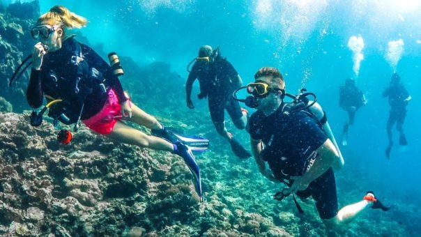 harga diving nusa lembongan