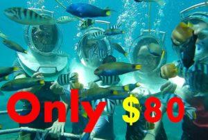 Bali Sea Walker Only $ 80