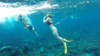 Manta Bay Snorkeling nusa penida