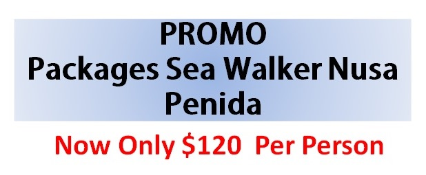 Promo Packages Sea Walker Nusa Penida