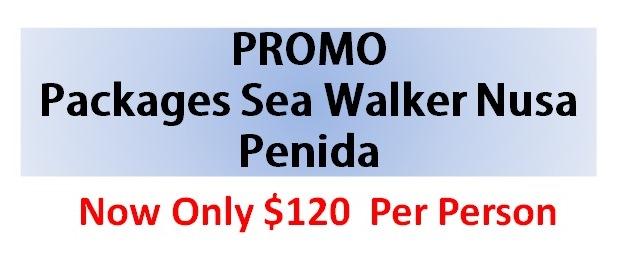 Promo Packages Sea Walker Nusa Penida