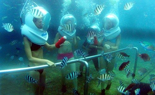 Watersport Tanjung Benoa Bali Promo