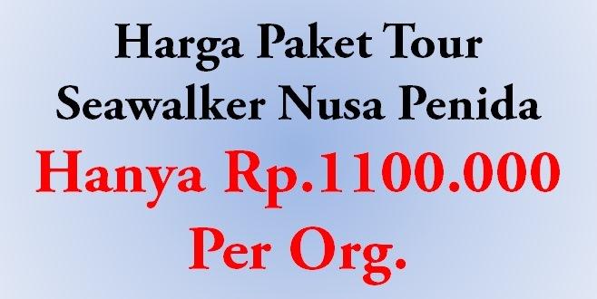 harga paket tour sea walker nusa penida