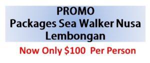 promo paket seawalker Nusa Lembongan