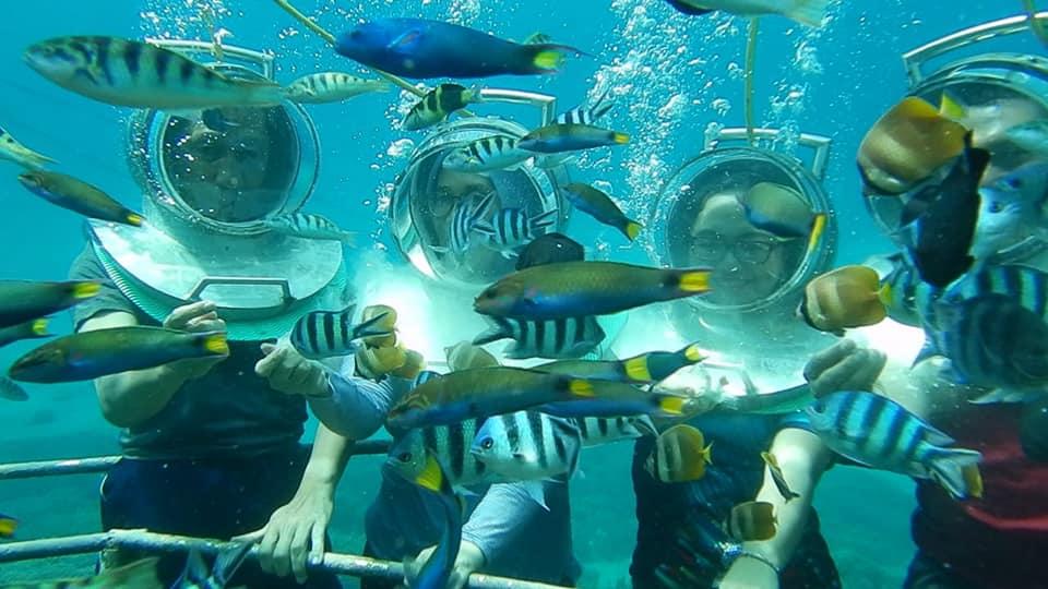 jual seawalker murah Tour Nusa Lembongan Bali